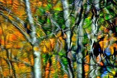 Photograph - Autumns Spiderweb Reflection by Frozen in Time Fine Art Photography