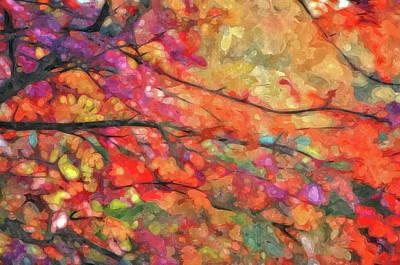 Photograph - Autumns Splendorous Canvas by Andrea Kollo