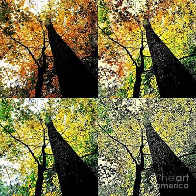 Autumns Wardrobe Change Art Print by Scott D Van Osdol