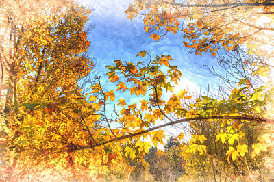 Photograph - Autumunal Colour Art by David Pyatt