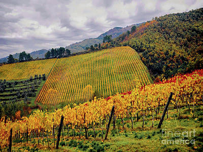 Photograph - Autunno Italiano by Jennie Breeze