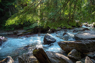Photograph - Avalanche Creek by Brian Stricker