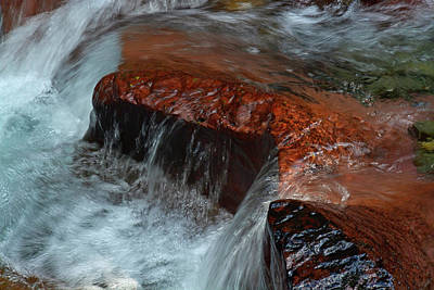 Photograph - Avalanche Creek Cascade 02 by Bruce Gourley