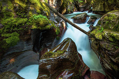 Avalanche Creek Art Print
