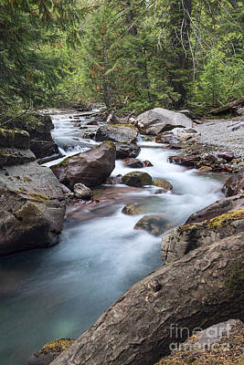 Photograph - Avalanche Creek by Jemmy Archer