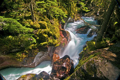 Print featuring the photograph Avalanche Gorge by Gary Lengyel