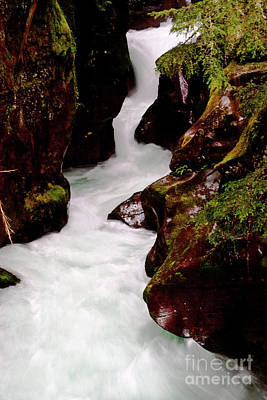 Photograph - Avalanche Gorge Spring 2 by Katie LaSalle-Lowery