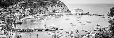 Avalon California Panoramic Picture Of Catalina Island Art Print by Paul Velgos