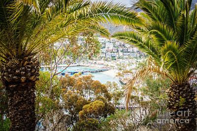Avalon California Through Palm Trees Print by Paul Velgos