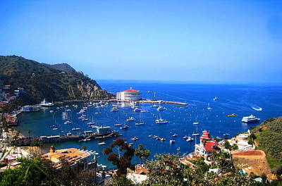 Avalon Harbor At Catalina Art Print by Catherine Natalia  Roche