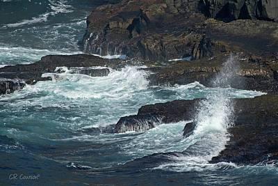 Photograph - Avalon Peninsula by CR Courson