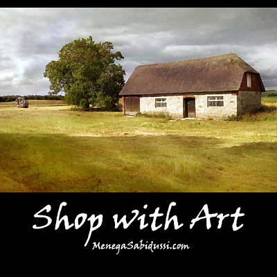 Painting - Avebury Cottage Tree And Standing Stone - Shop With Art by Menega Sabidussi