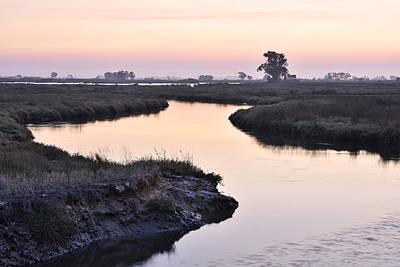Aveiro Wetlands Art Print
