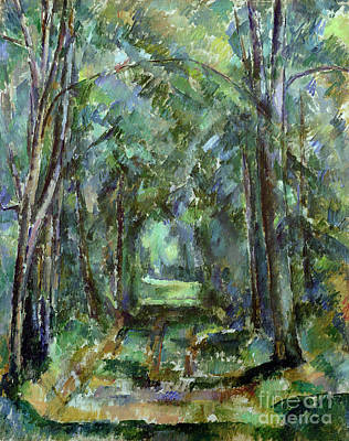 Tree Bark Painting - Avenue At Chantilly by Paul Cezanne