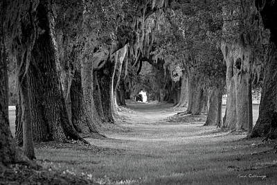 Photograph - Avenue Of Oaks Revisited Sea Island Golf Club St Simons Island, Ga by Reid Callaway