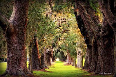 Sports Royalty-Free and Rights-Managed Images - Avenue Of Oaks Sea Island Golf Club St Simons Island Georgia Art by Reid Callaway