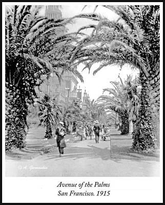 Priska Wettstein Pink Hues - Avenue of the Palms, Vintage Photograph by A Macarthur Gurmankin