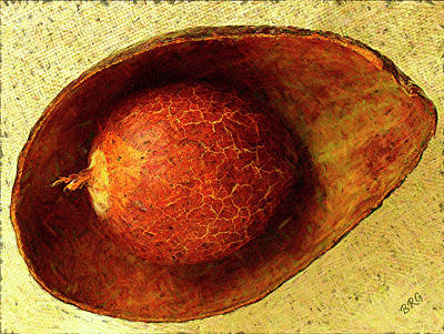 Photograph - Avocado Seed And Skin I by Ben and Raisa Gertsberg