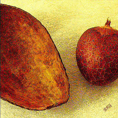 Avocado Seed And Skin II Art Print by Ben and Raisa Gertsberg