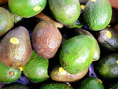 Wa Painting - Avocados by Lanjee Chee