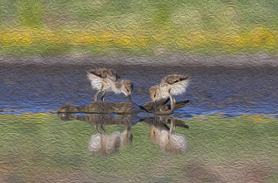 Painting - Avocet Babies by Jessica Nguyen