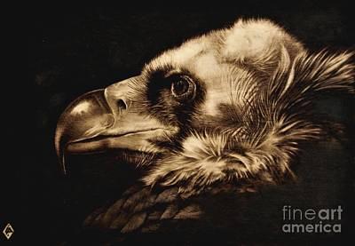 Woodburning Pyrography - Avvoltoio by Ilaria Andreucci