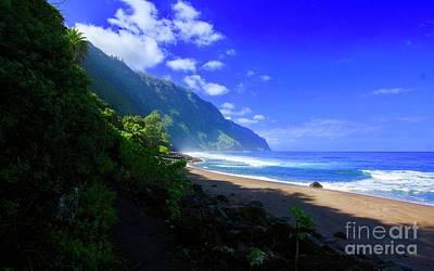 Photograph -  Awahua Beach by Craig Wood