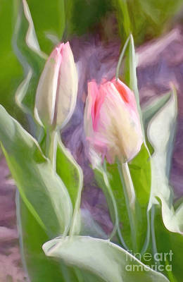 Flower Photograph - Awaiting Opening Day by Kerri Farley