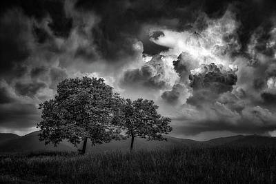 Photograph - Awaiting The Storm by Plamen Petkov