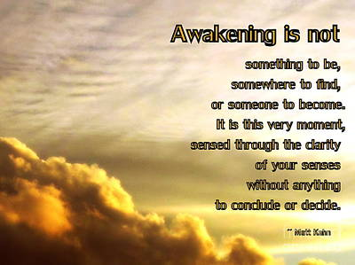 Photograph - Awakening Is Not by Sybil Staples