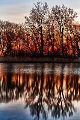 Metro Park Photograph - Awakening by James Marvin Phelps