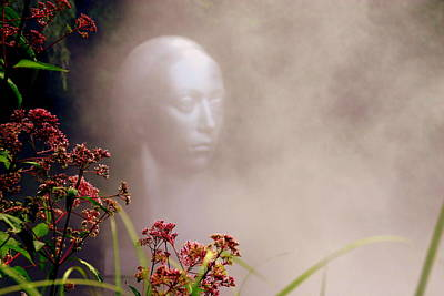 Grounds For Photograph - Awakening by Maggie McLaughlin
