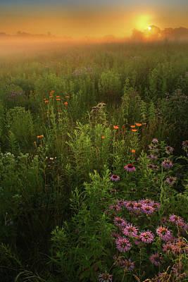 Photograph - Awakening by Rob Blair