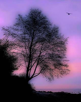 Photograph - Away by Bill Kellett