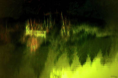 Photograph - Awe Those Moody Reflecting Waters by Dee Browning