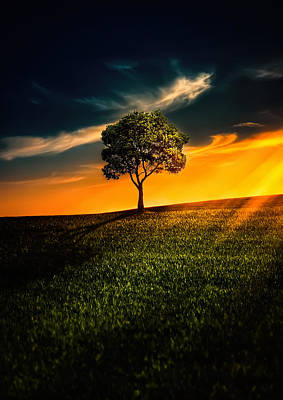 Awesome Solitude II Original by Bess Hamiti