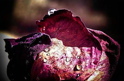 Axl Rose Art Print by Karen Scovill