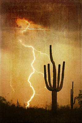 Photograph - Az Saguaro Lightning Storm V by James BO Insogna