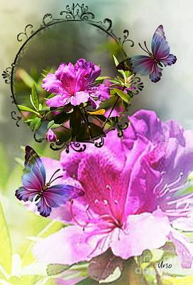 Photograph - Azalea And Butterflies by Maria Urso
