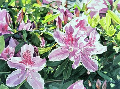 Shrubbery Painting - Azalea Carmelo by David Lloyd Glover