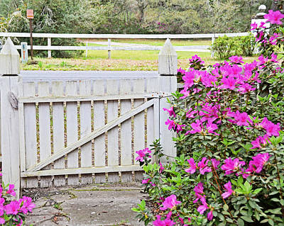 Photograph - Azalea Gate by Linda Brown