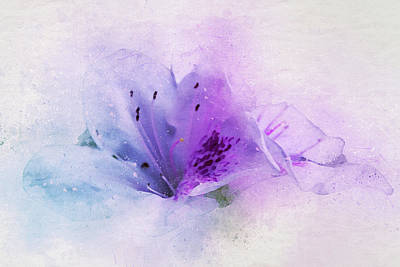 Stamen Mixed Media - Azalea Splash 2 by Terry Davis