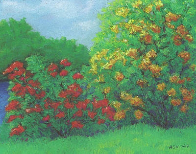 Pastel - Azaleas In May by Anne Katzeff