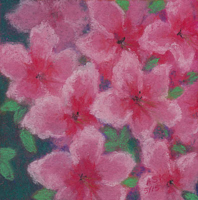Pastel - Azaleas In Pink by Anne Katzeff