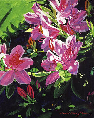 Painting - Azaleas With Dew Drop by David Lloyd Glover