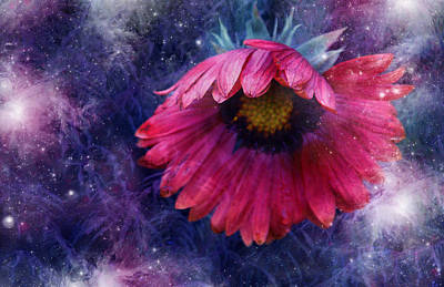 Art Print featuring the photograph Azure Claret by Kathleen Stephens