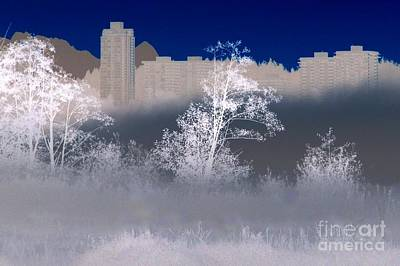 Photograph - Azure Skyline by Frank Townsley