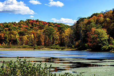 Music Royalty-Free and Rights-Managed Images - B and O Pond in Autumn by Thomas R Fletcher