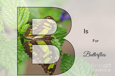 Digital Art - B Is For Butterflies by Eva Lechner