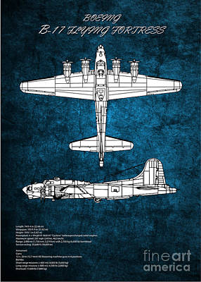 On Trend At The Pool - B17 Flying Fortress by Airpower Art